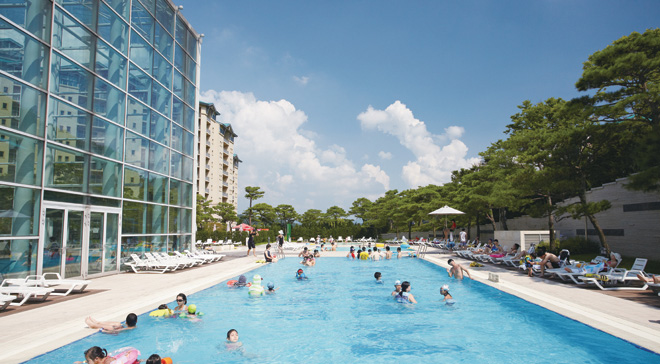 General size pool for swimming and diverse activities (Summer season open)